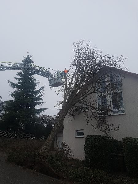 Sturmschaden